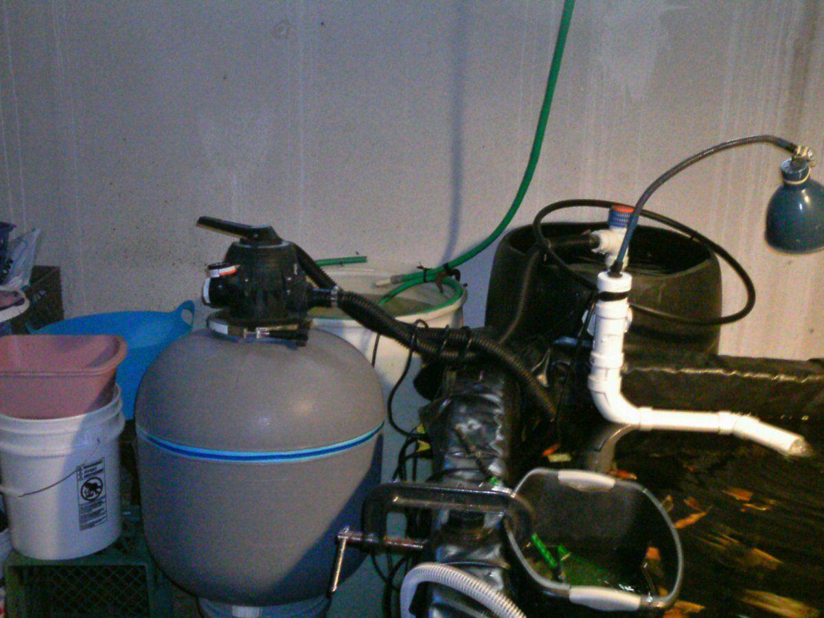 Diy 30 gal barrel drum filter garden pond forums for Homemade pond filter box
