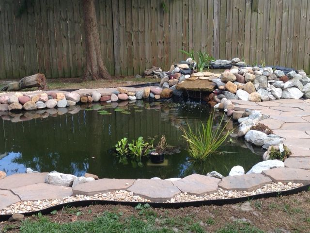 Pond edge and flagstone garden pond forums for Garden pond edging