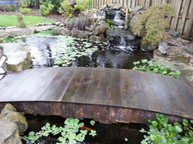 Pond For Sale Or Free Trade Page 2 Garden Pond Forums