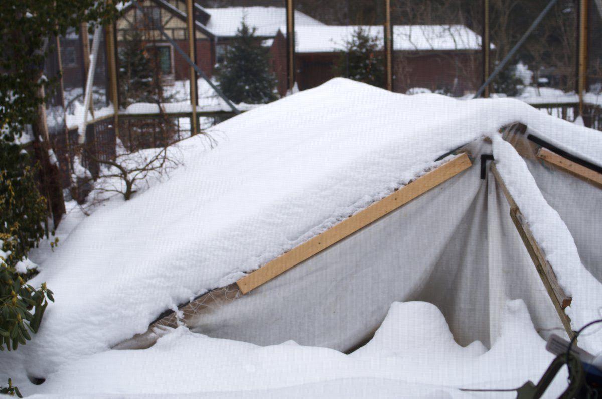 210218 - snow on pond tent.jpg