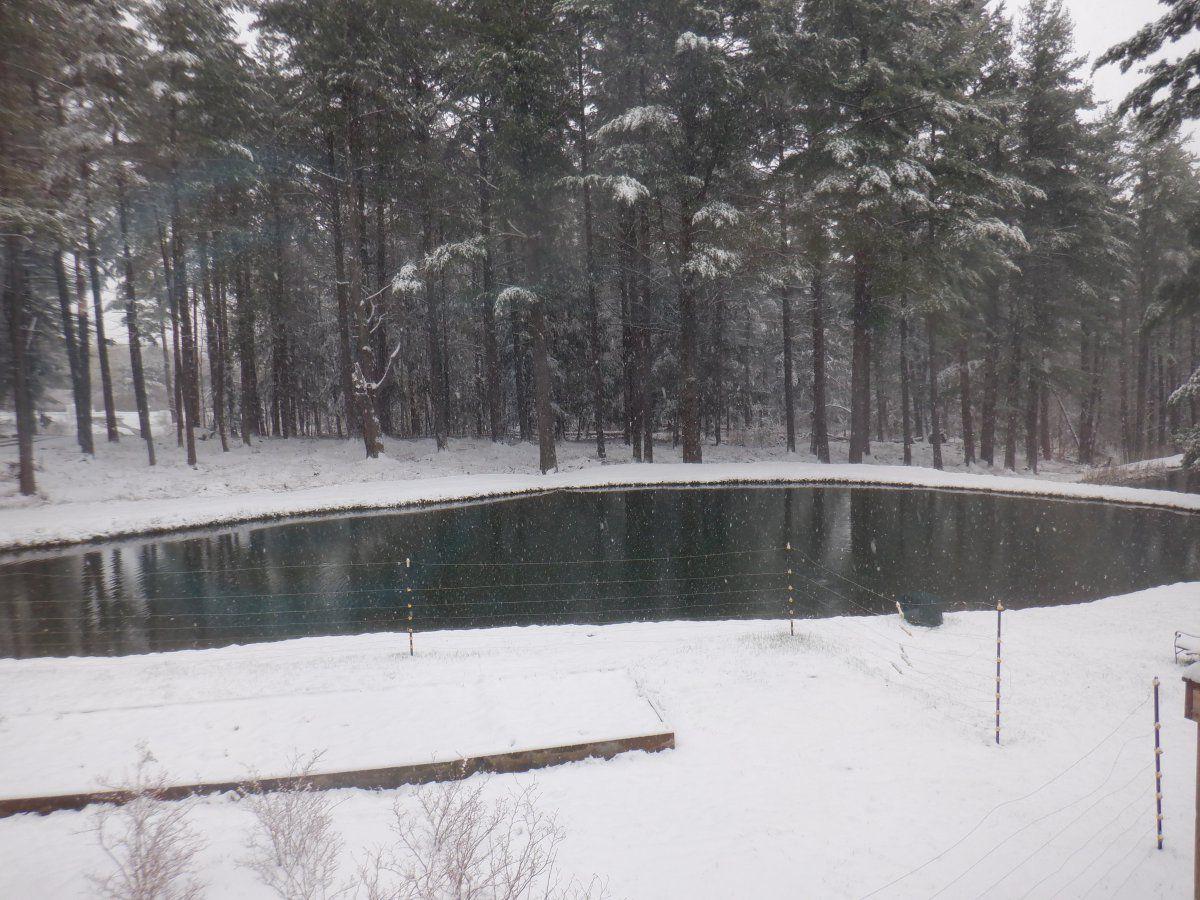 april 21st snow storm 001.JPG