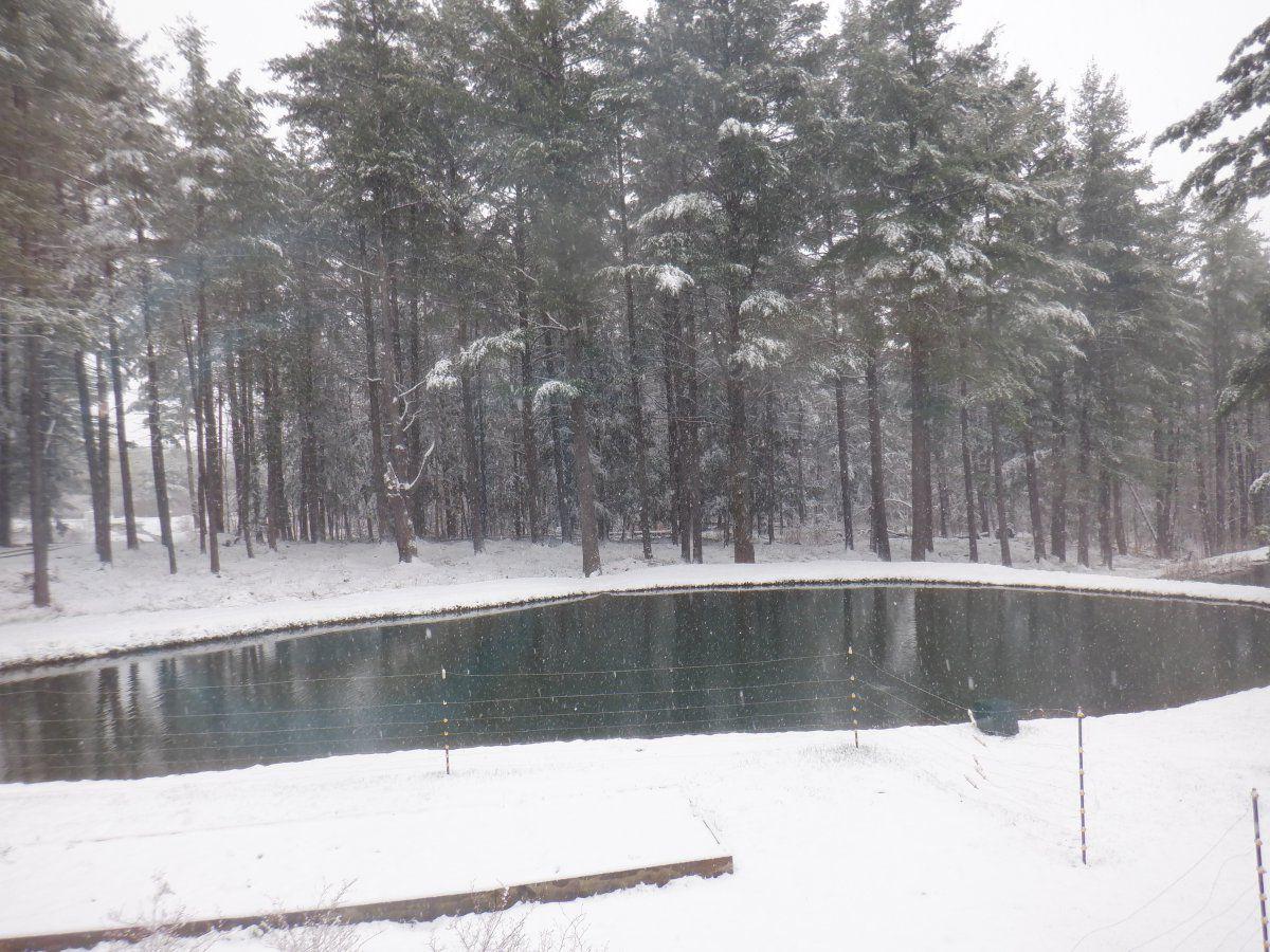 april 21st snow storm 002.JPG