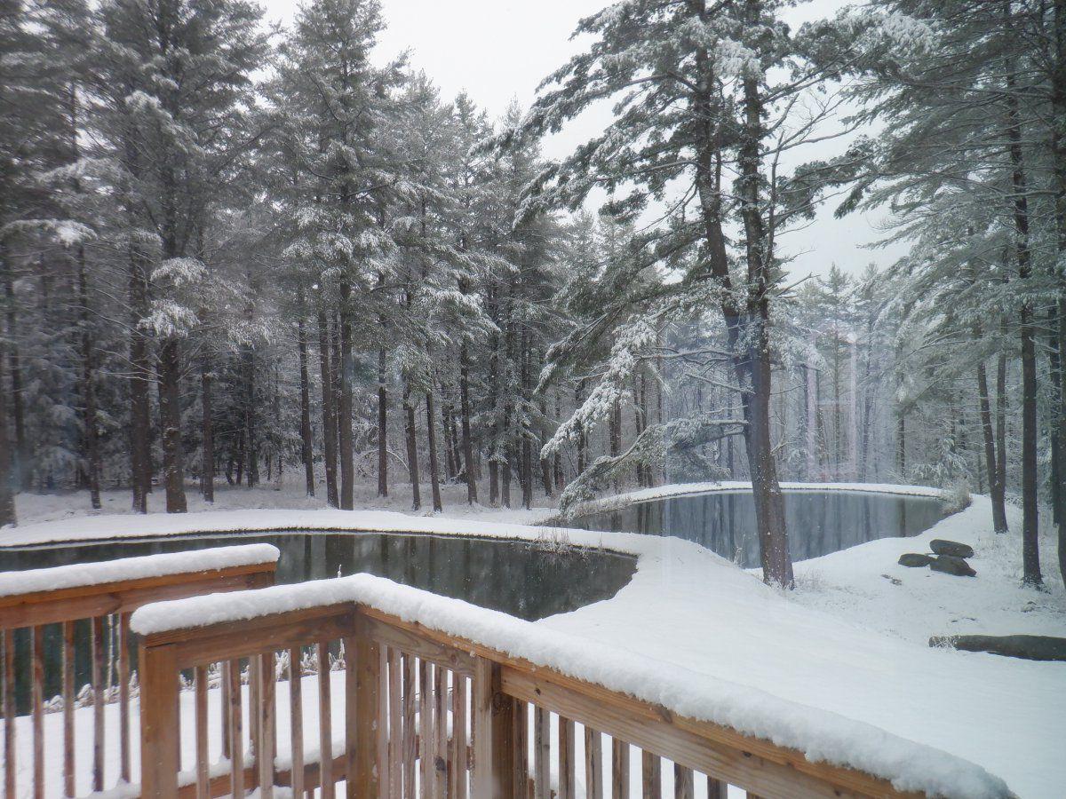 april snow storm 003.JPG