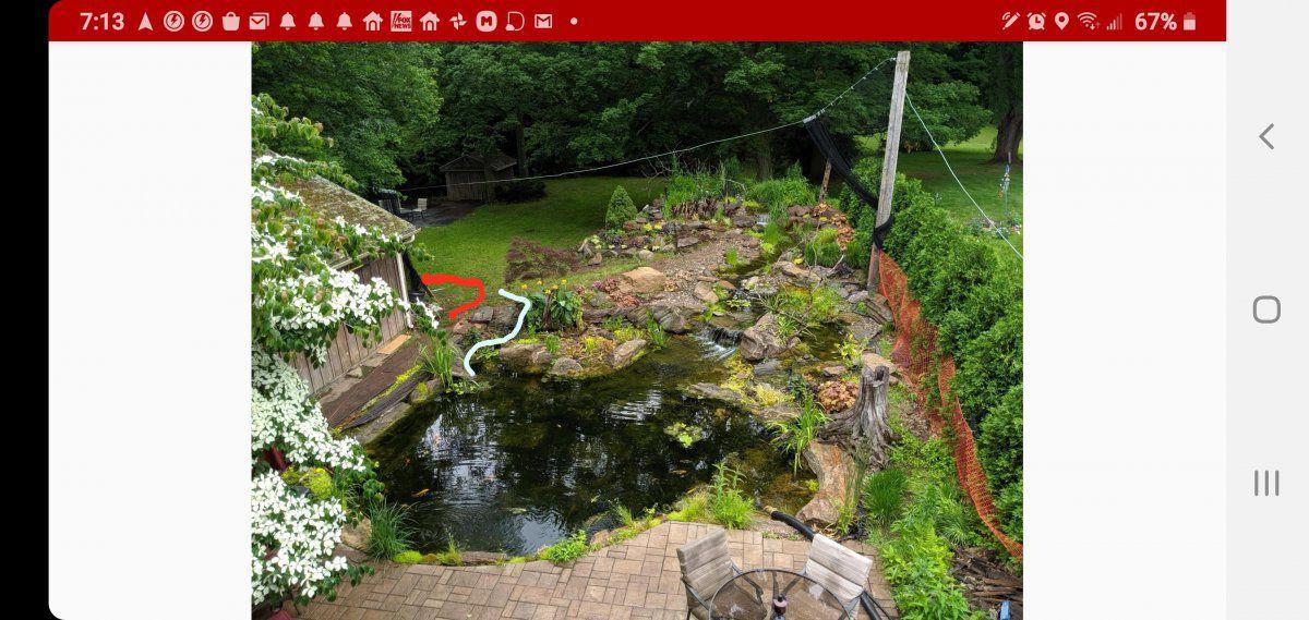 arial pond year 2.jpg