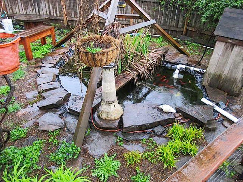 Backyard Koi Pond 2.jpg
