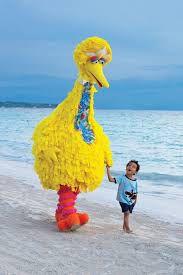 big bird and friend.jpg