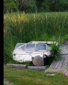 Boat pond.jpg
