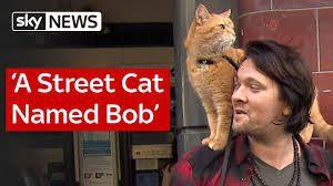 bobcatt.jpg
