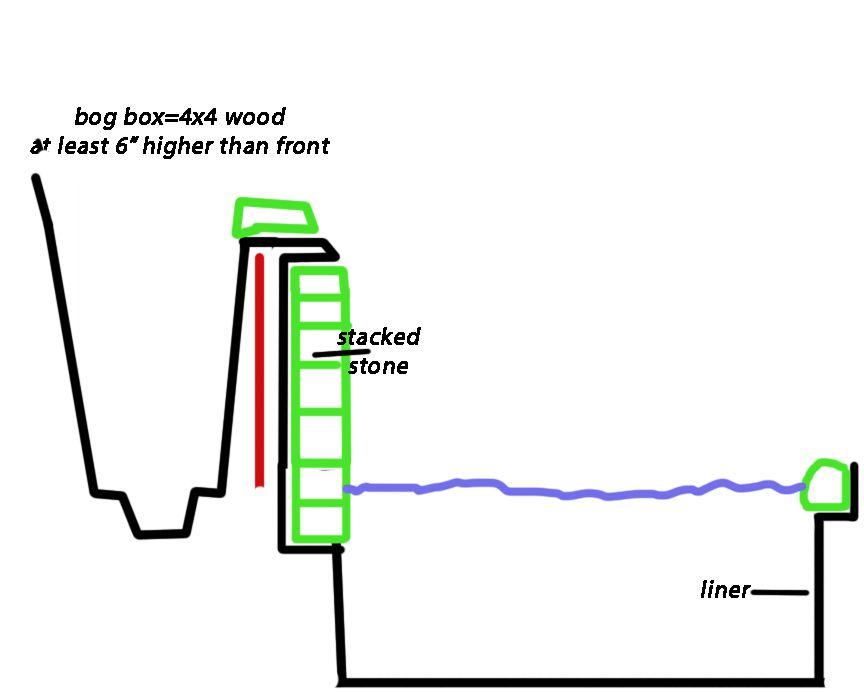 Bog box + liner cross section.jpg