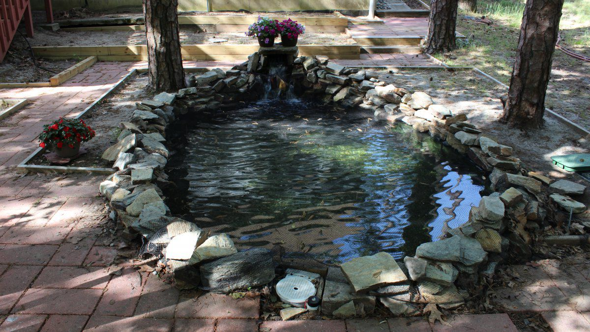 Finished Pond.JPG
