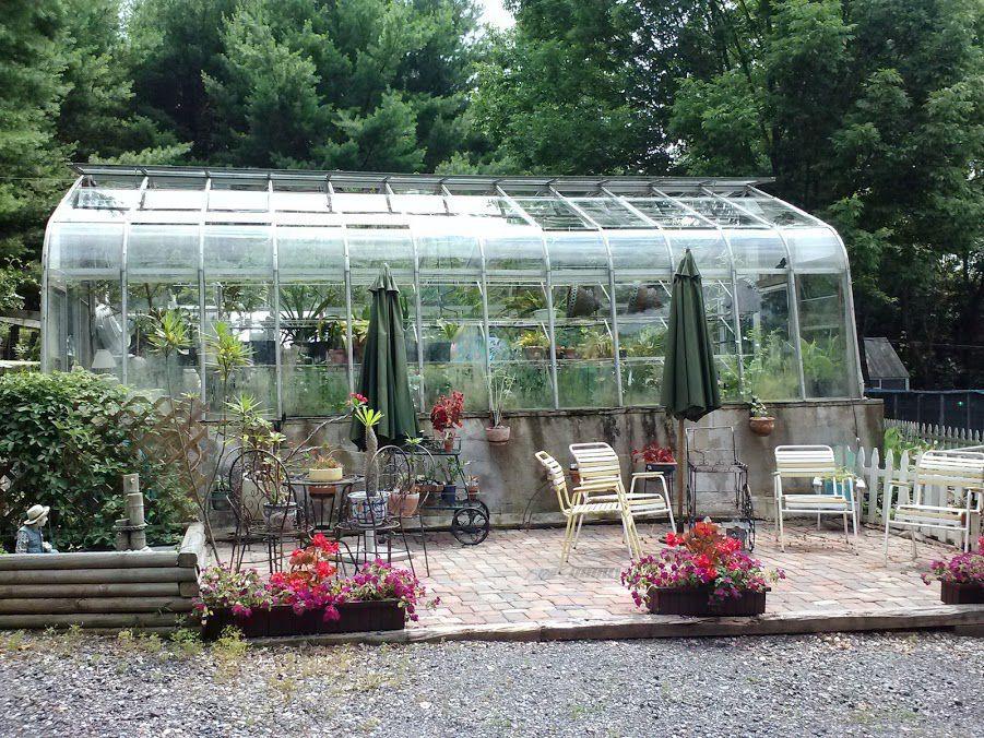 greenhouse5.jpg