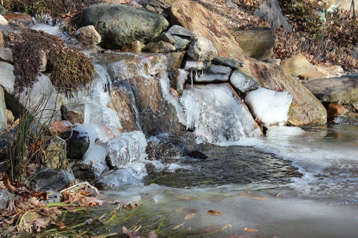 icy pond pics 02.jpg