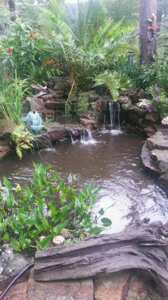 Bottom drain question garden pond forums for Garden pond questions