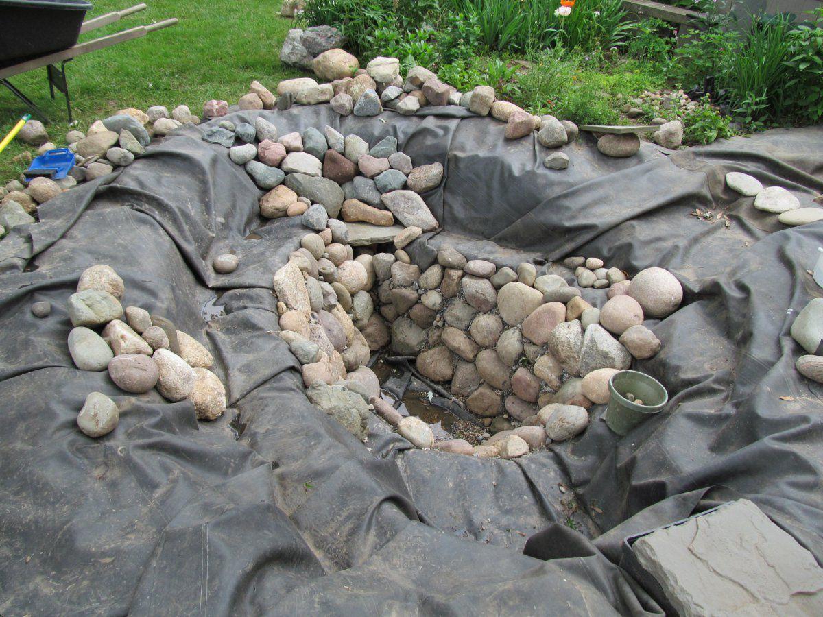 Plant shelf depth garden pond forums for Koi pond depth