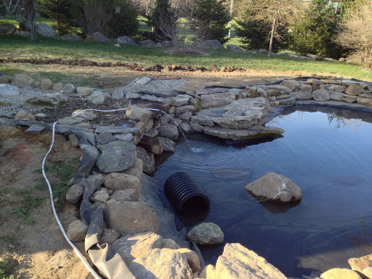 Making a koi hideout garden pond forums for Koi pond forum