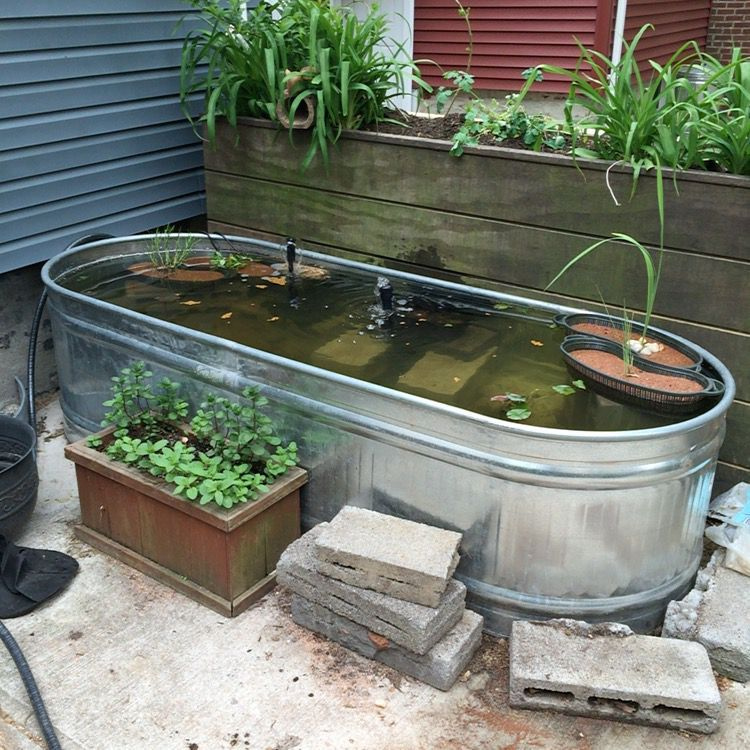 Beau Galvanized Stock Tank Water Garden Designs