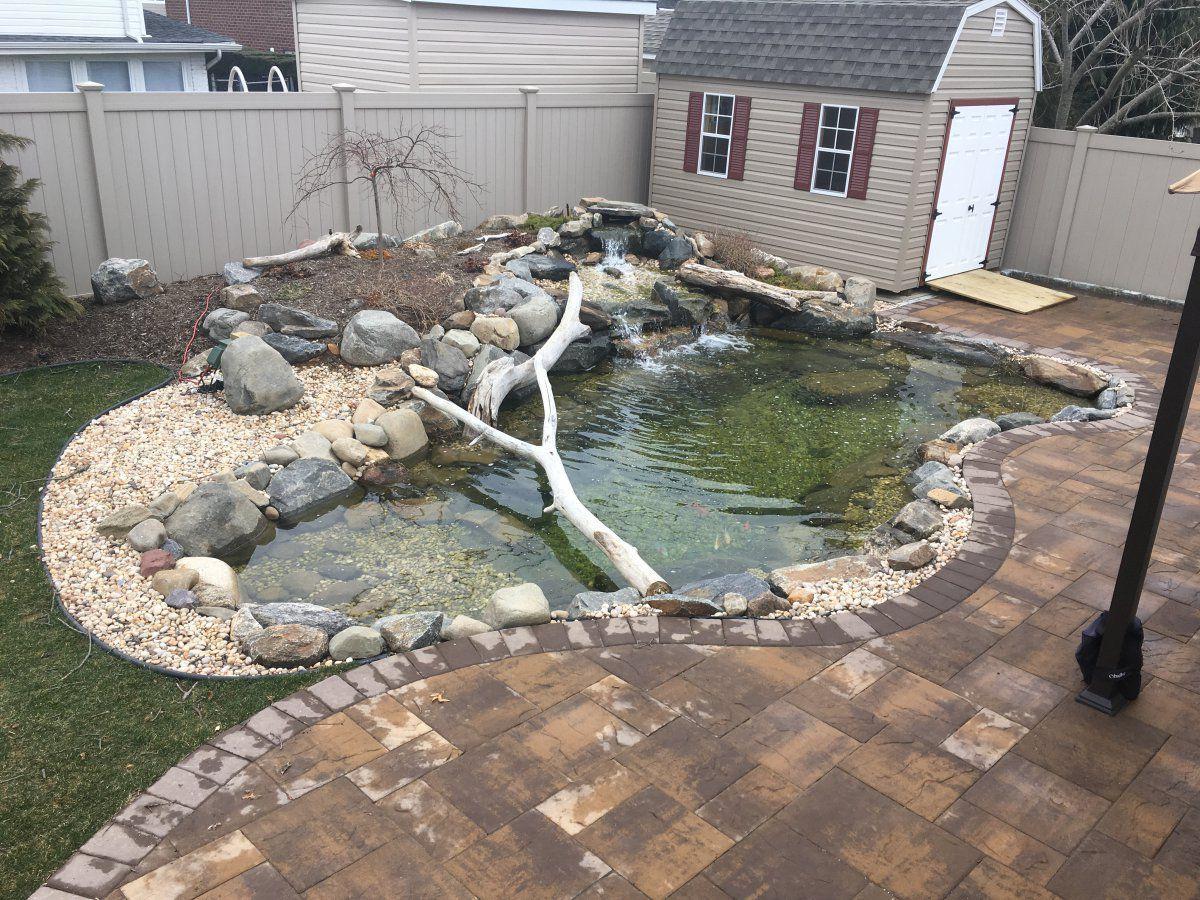 Aquascape Style Pond Garden Pond Forums