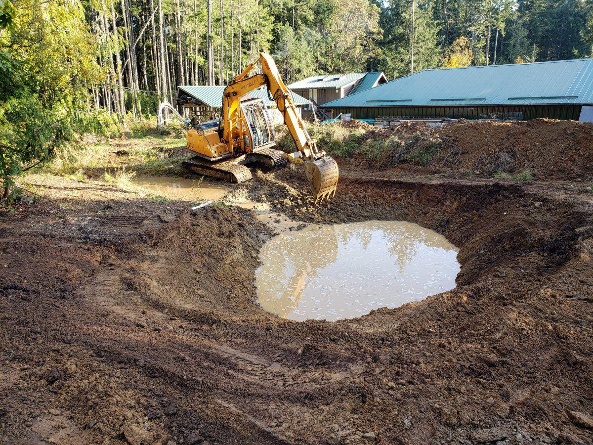 Jurassic pond digging 2020.jpg