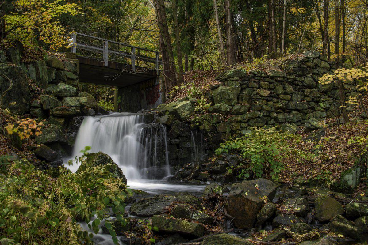 Naugatuck State Forest-1-14.JPG
