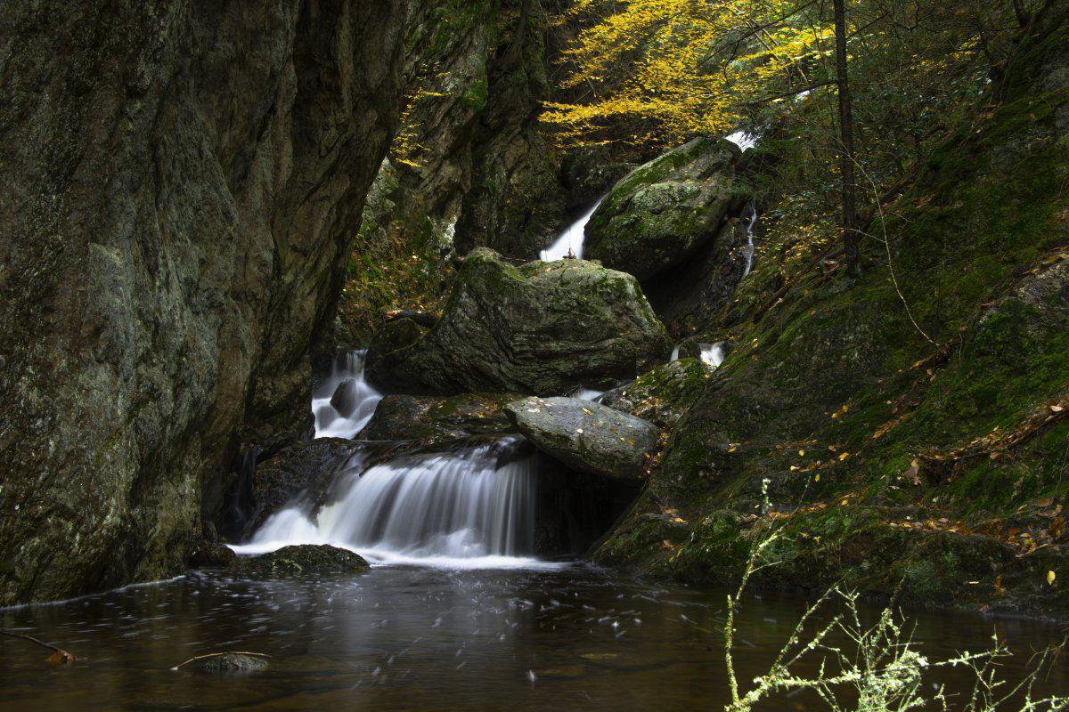 Naugatuck State Forest-1-4.JPG