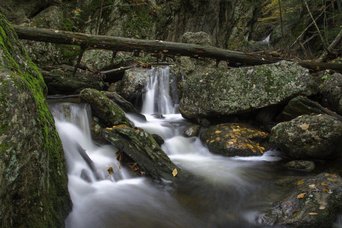 Naugatuck State Forest-1-6.JPG