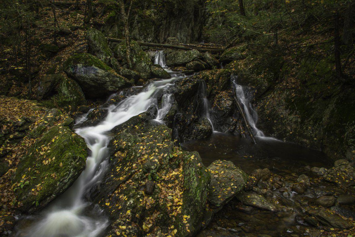 Naugatuck State Forest-1-7.JPG