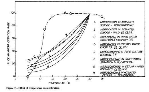 Nitrification effect of temperature.jpg