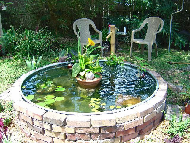 Superieur Garden Pond Forums