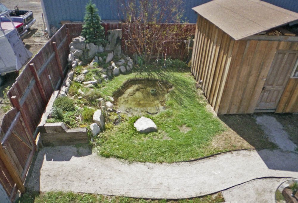 pond and shed from roof copy.jpg
