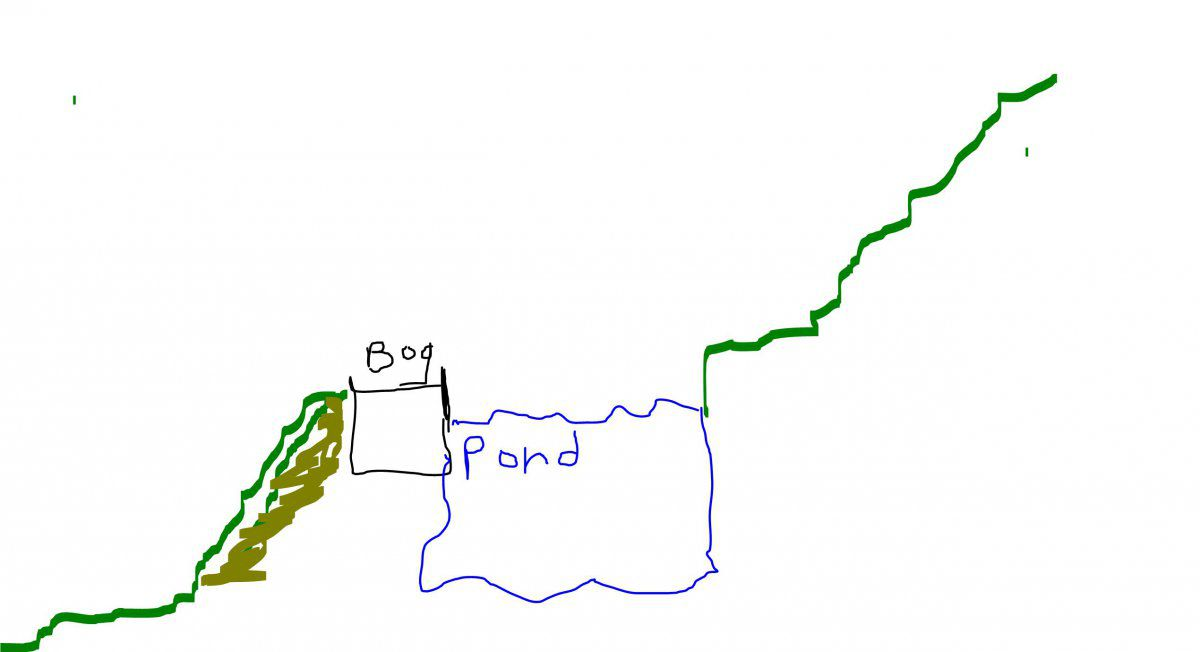 pond edge.JPG