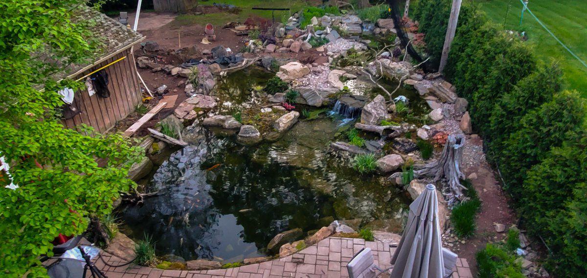 pond expansion (1 of 1).jpg