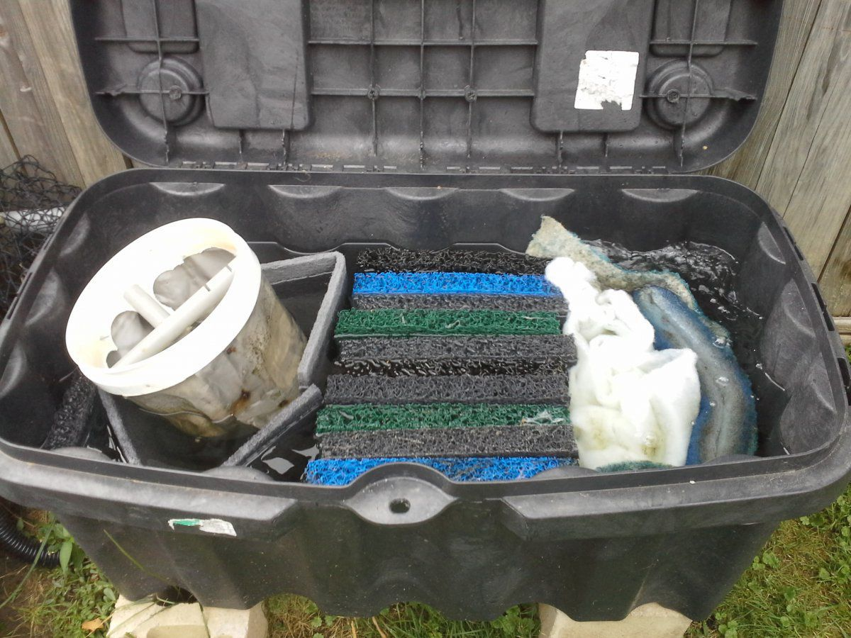 What is going on with these tests and what impact does for Above ground fish pond filters