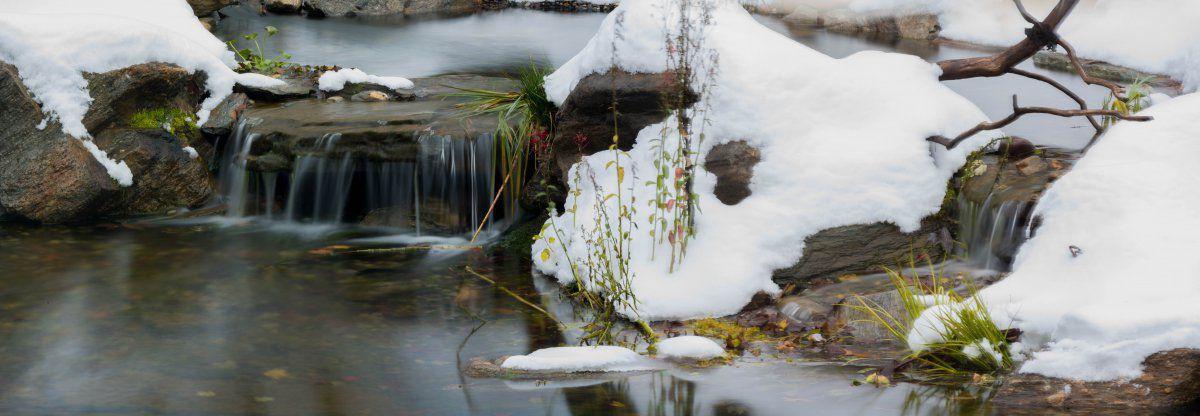 pond first snow (1 of 2)-5.jpg