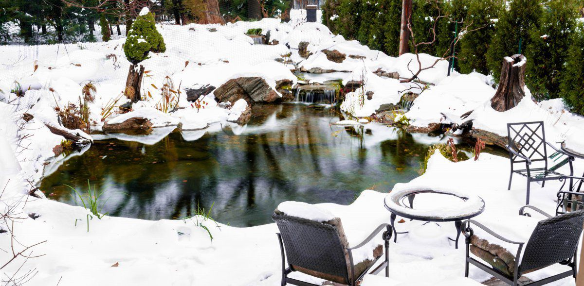 pond first snow (2 of 2)-5.jpg