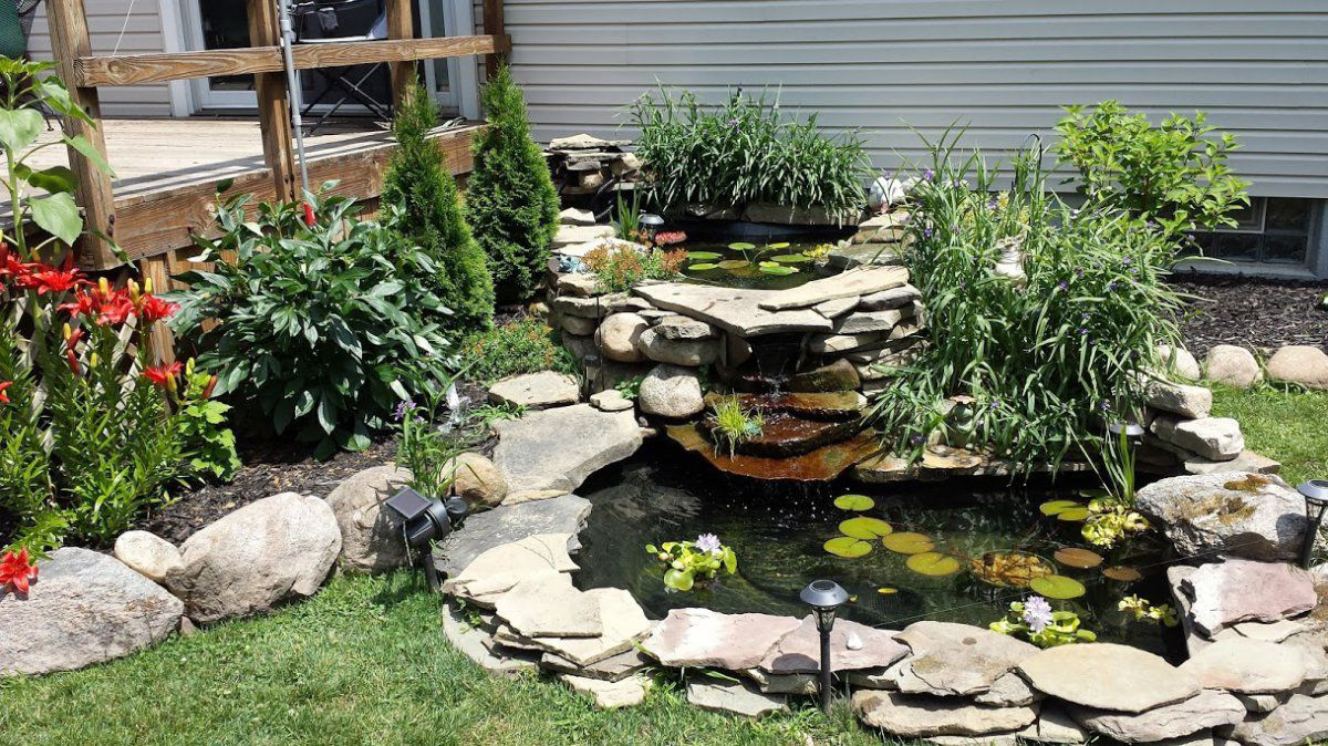 pond front.jpg