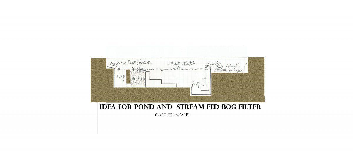 pond section idea.jpg