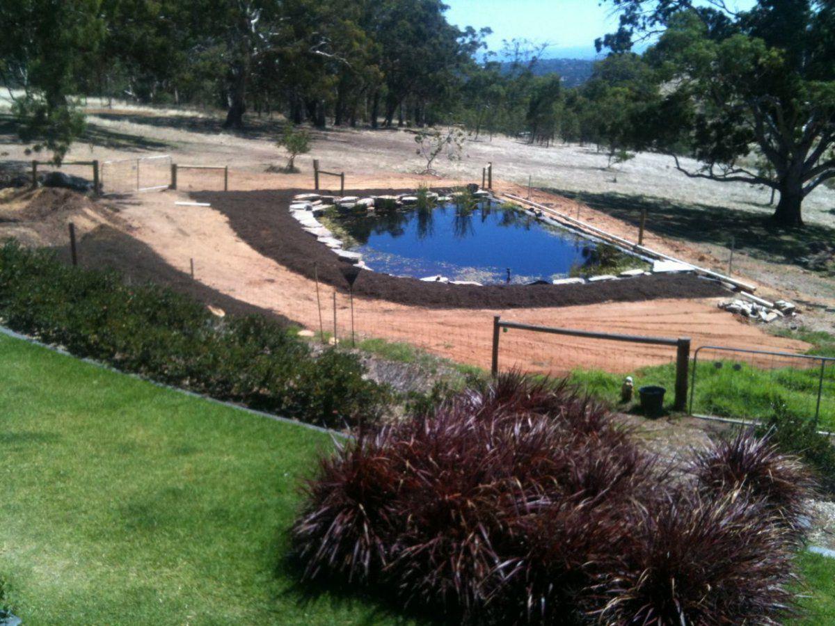 Pond View2.jpg