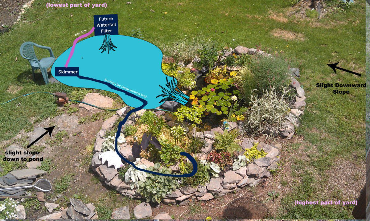 How do you hide your skimmer box garden pond forums for Garden pond skimmer