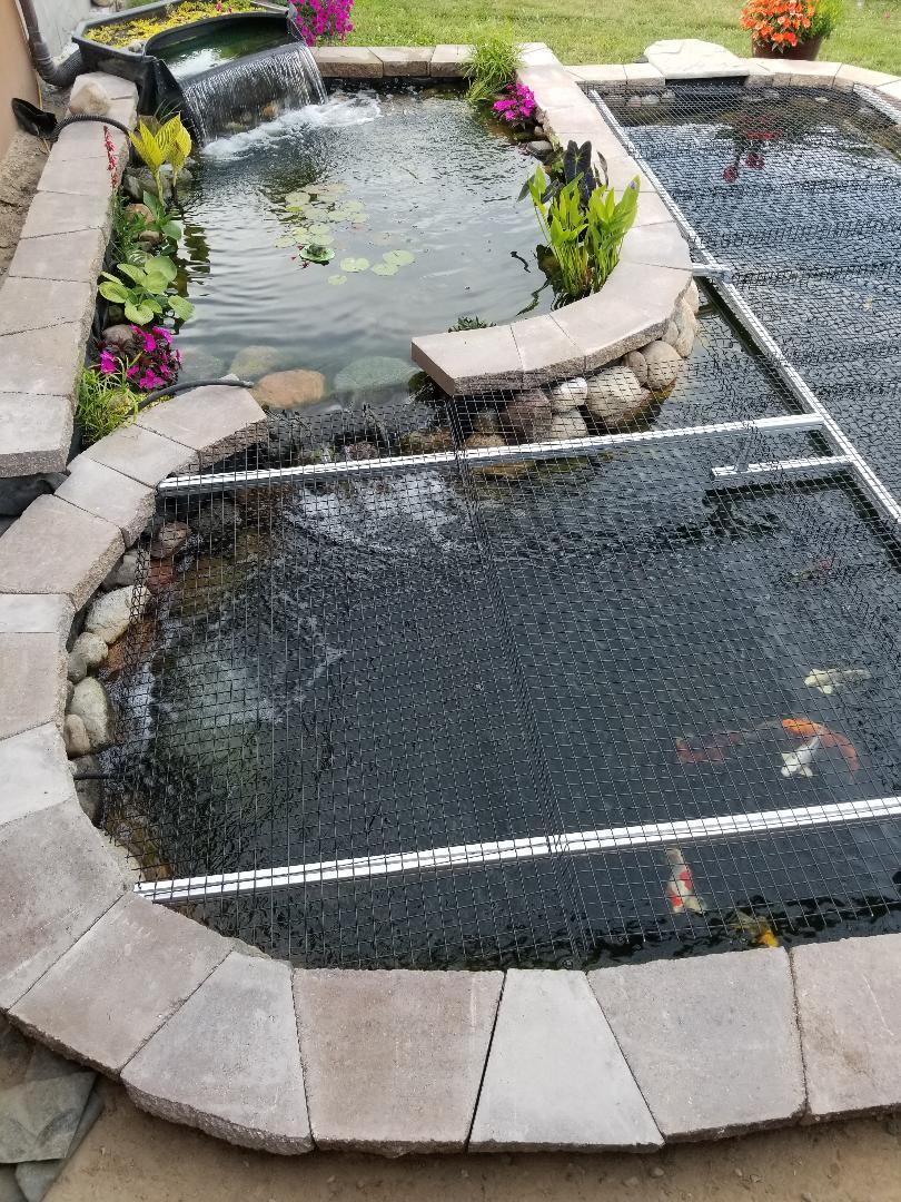 pond2capped2.jpg
