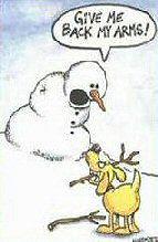 snowman_arms_sm.jpg