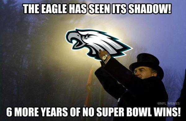 The-Eagle-has-seen-its-shadow-e1517657407165.jpg