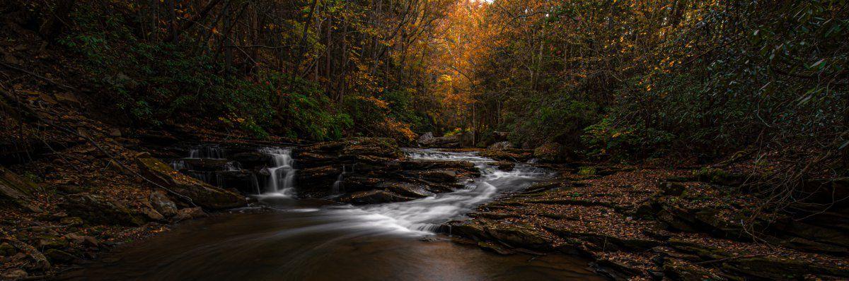Yranquil stream in fall (1 of 1).jpg