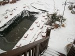 snow pond march 3rd 2014 023.JPG