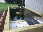 1800 gallon turtle pond