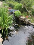 front view of pond wih%22falls%22.jpg