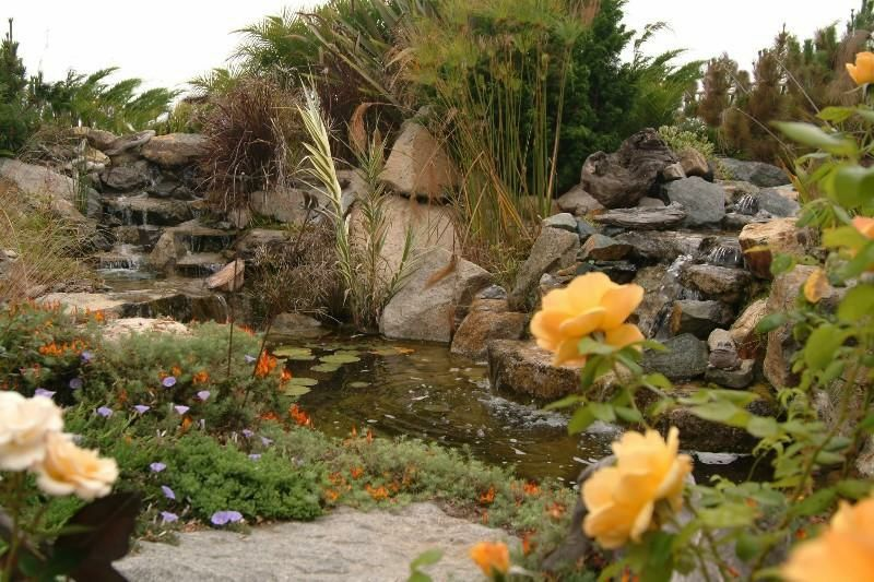 """Front Yard """"Fence-less Pond"""" 3-ft. deep 