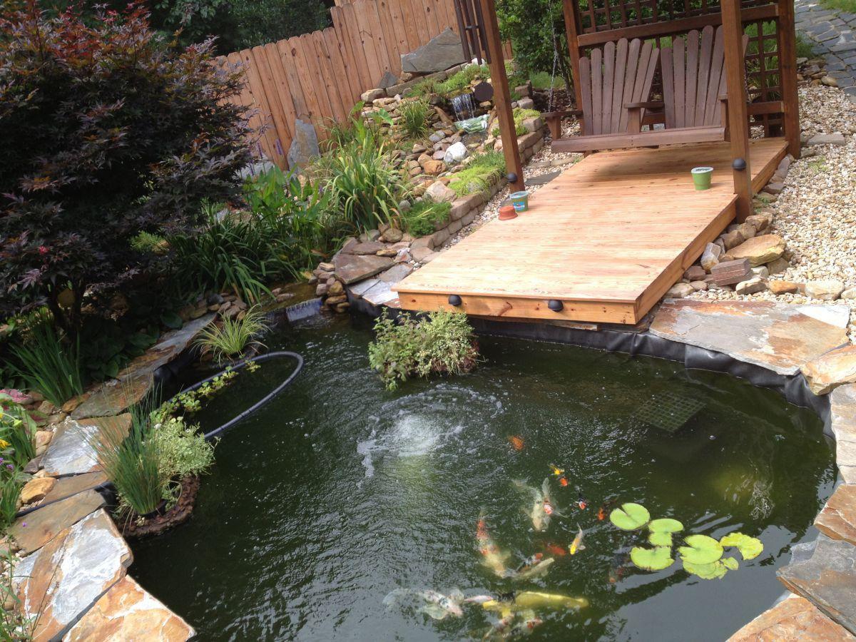 koi pond july 2013 garden pond forums
