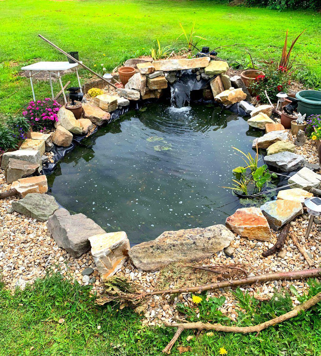 My Garden Pond In Co. Louth, Ireland.