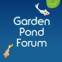 www.gardenpondforum.com